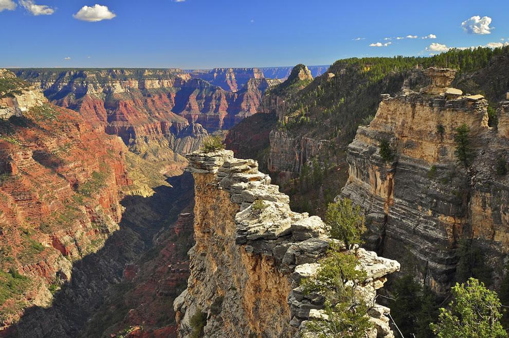 The Transept, North Rim, Grand Canyon National Park
