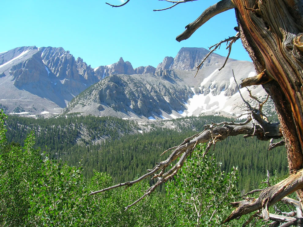 Wheeler Peak Great Basin National Park