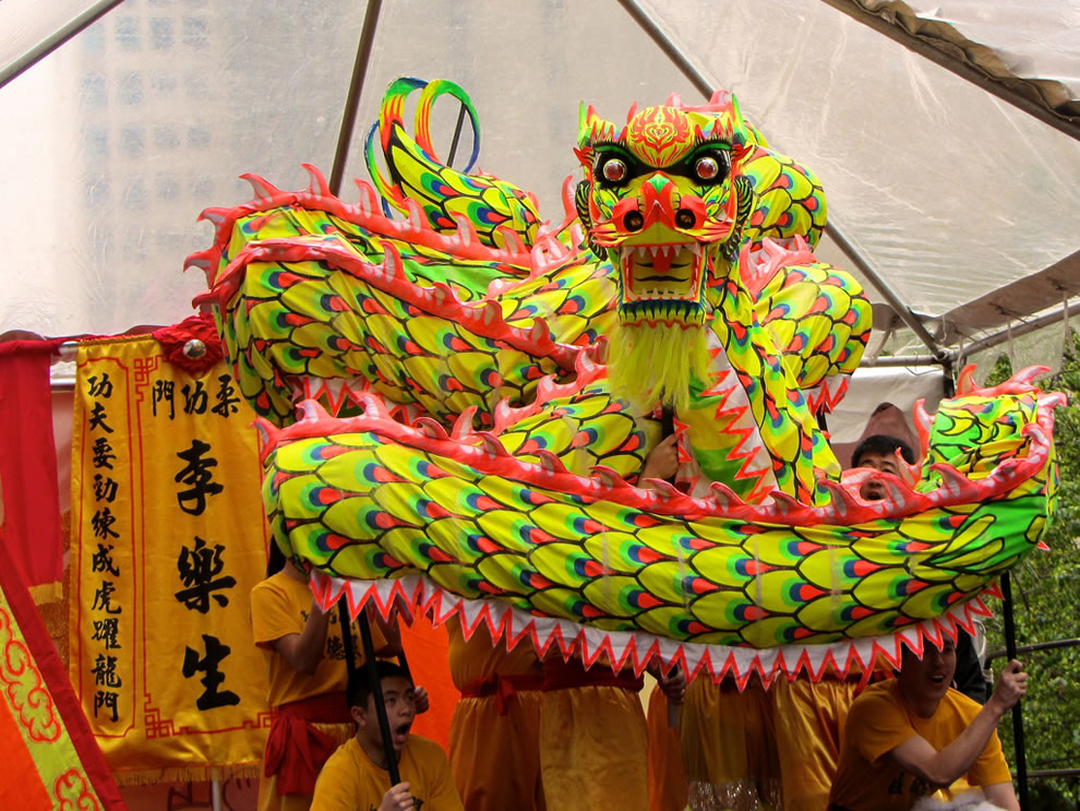welcome year of the