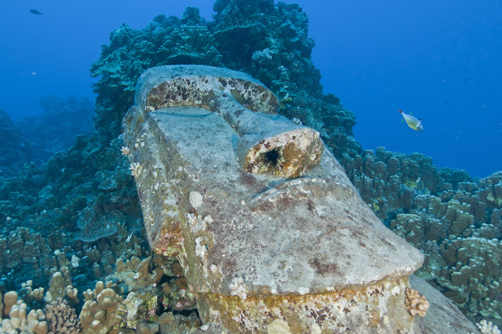 Sunken Moai at Easter Island