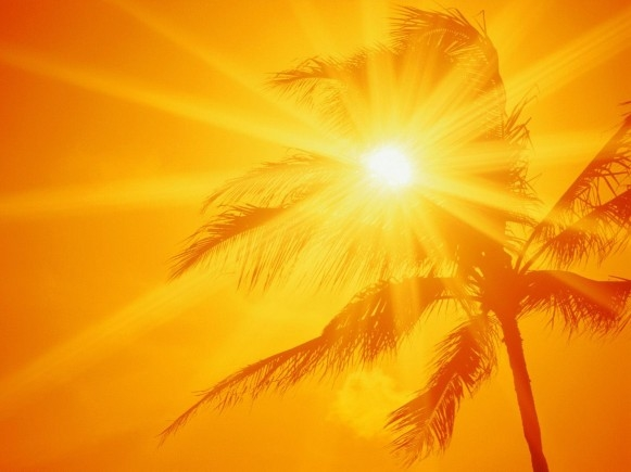 Image result for sun summer
