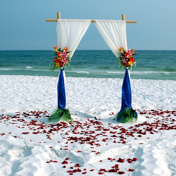 Simple Bamboo Beach Wedding Pictures Photos And Images