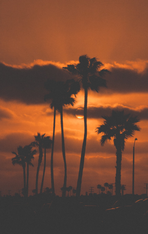 Wallpaper Quotes For Friends Dark Orange California Sunset Pictures Photos And Images