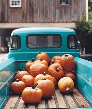 Cute Rustic Fall Wallpapers Pumpkins In A Truck Pictures Photos And Images For