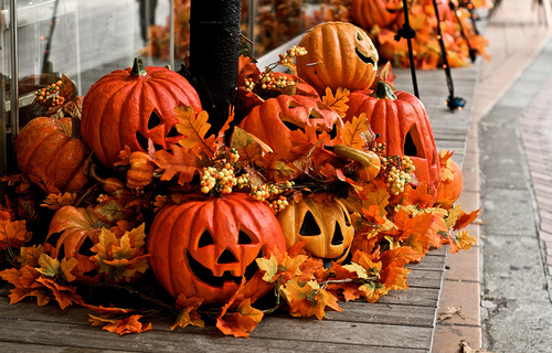 Fall Wallpaper Backgrounds Pumpkins Pumpkin Patch Decor Pictures Photos And Images For
