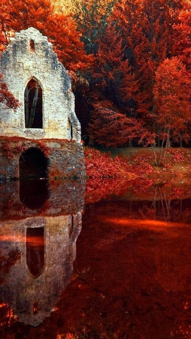 Fall Day Wallpaper Red Autumn In Chamonix Rhone Alpes France Pictures