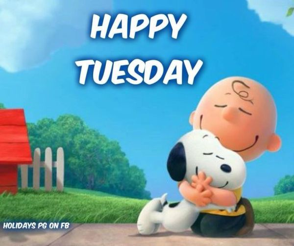 snoopy tuesday quotes. quotesgram