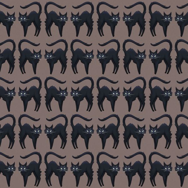 Black Cat Pattern And