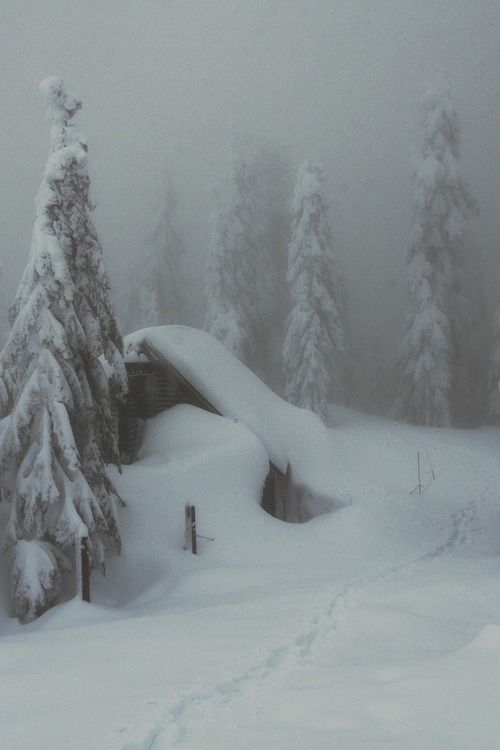 Cute Love Wallpapers With Sayings Heavy Winter Snow Pictures Photos And Images For