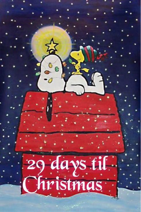 29 Days Until Christmas Pictures Photos And Images For