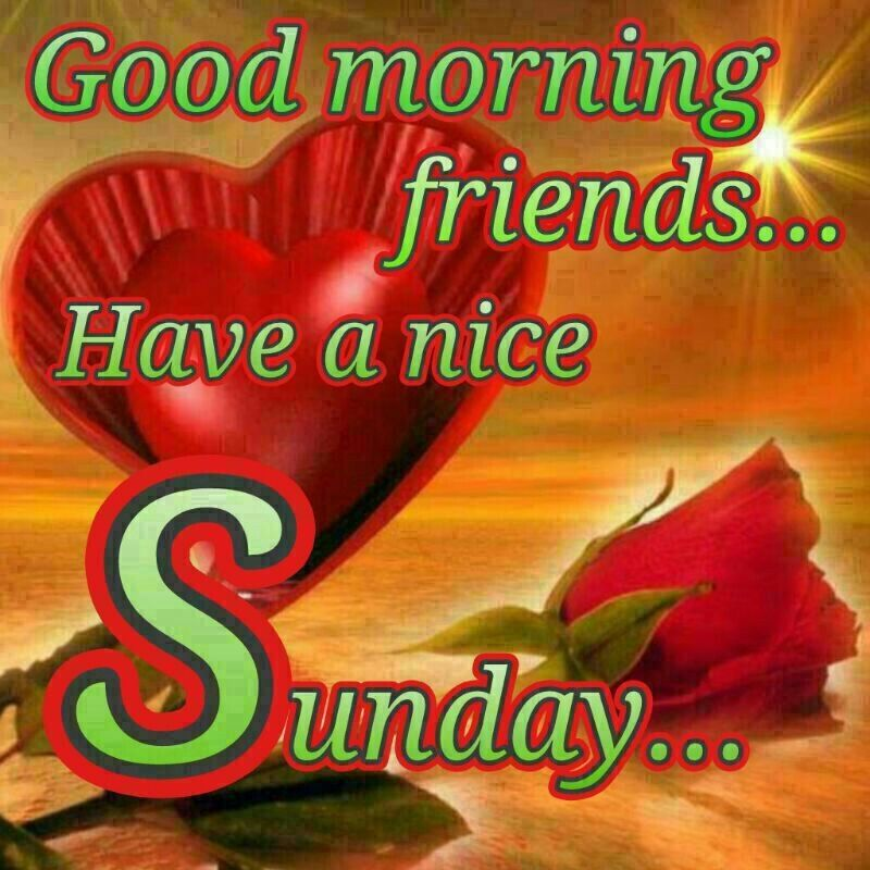 Good Morning Sunday Friends Pictures Photos And Images