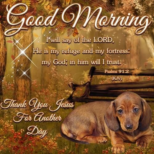 Cute Dachshund Wallpaper Good Morning Thank You Jesus For Another Day Pictures