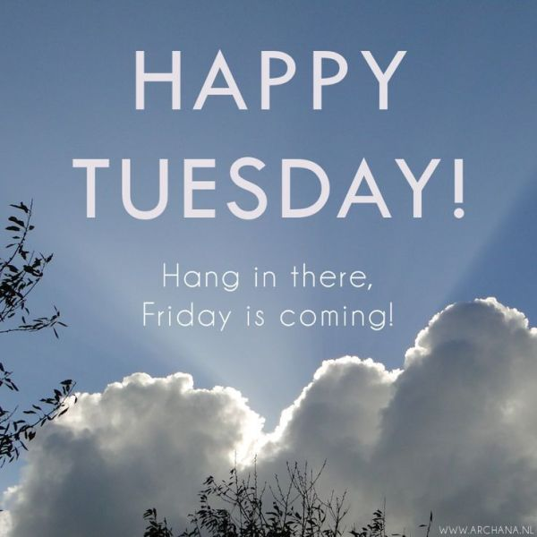 Happy Tuesday Hang In There Pictures Photos and Images