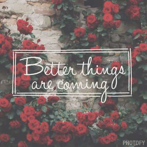 Really Cute Thanksgiving Wallpaper Better Things Are Coming Pictures Photos And Images For