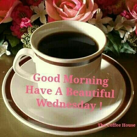 Good Morning Wednesday Pictures. Photos. and Images for Facebook. Tumblr. Pinterest. and Twitter