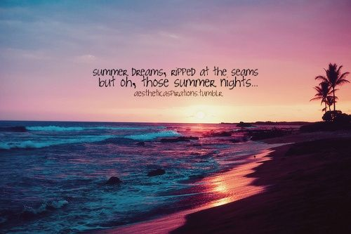 Sunflower Wallpaper With Quote Those Summer Nights Pictures Photos And Images For