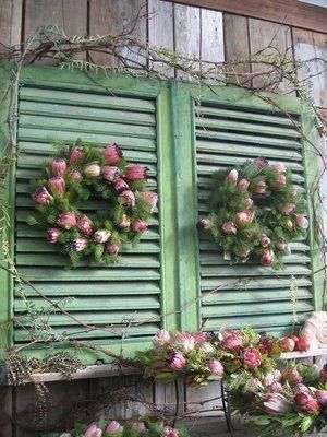 Shutters Adorned With Pretty Pink Rose Wreaths Pictures