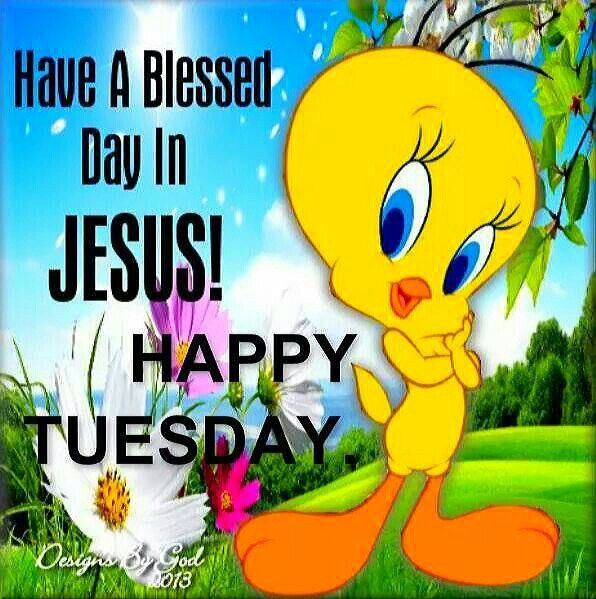 happy tuesday have a