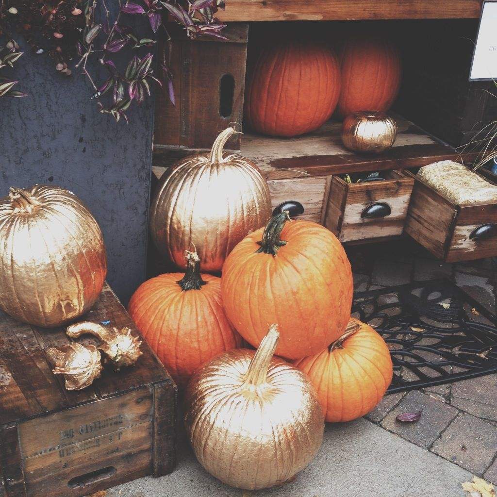 Seasonal Fall Coffee Desktop Wallpaper Gold Amp Orange Pumpkins Pictures Photos And Images For