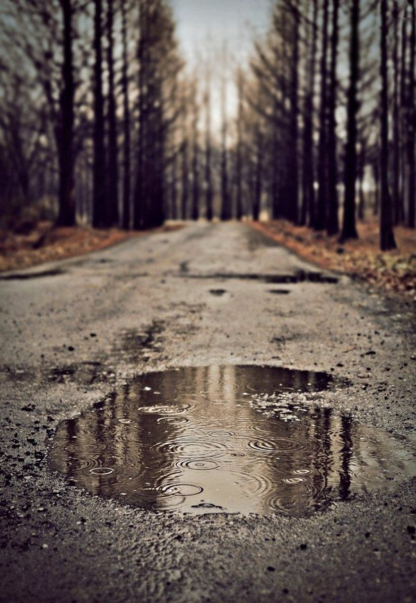1920x1080 Fall Urban Wallpaper Rain Puddle Pictures Photos And Images For Facebook