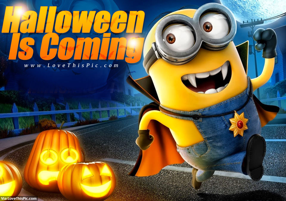 Cute Love Quotes And Sayings Wallpapers Halloween Is Coming Pictures Photos And Images For