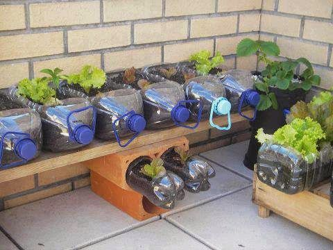 Plastic Bottle Garden Idea Pictures Photos And Images For