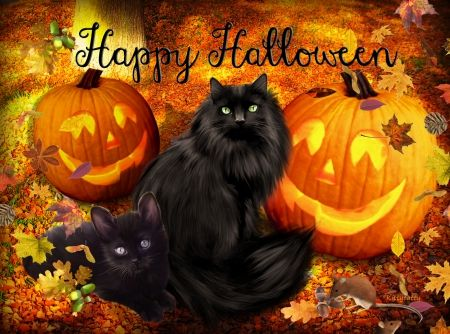 Cute Witchy Wallpapers Happy Halloween Black Cats Pictures Photos And Images