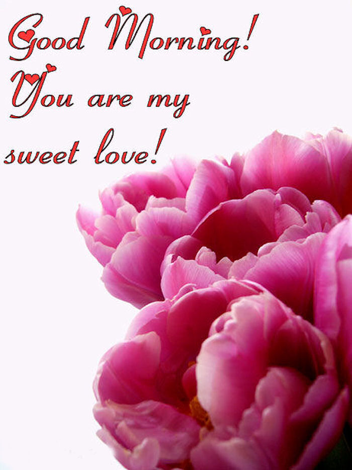 Good Morning You Are My Sweet Love Pictures Photos And