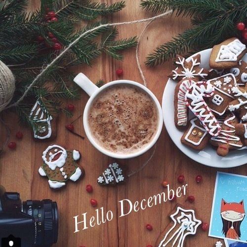 Happy Sunday Wallpaper With Quotes Hello December Christmas Image Pictures Photos And