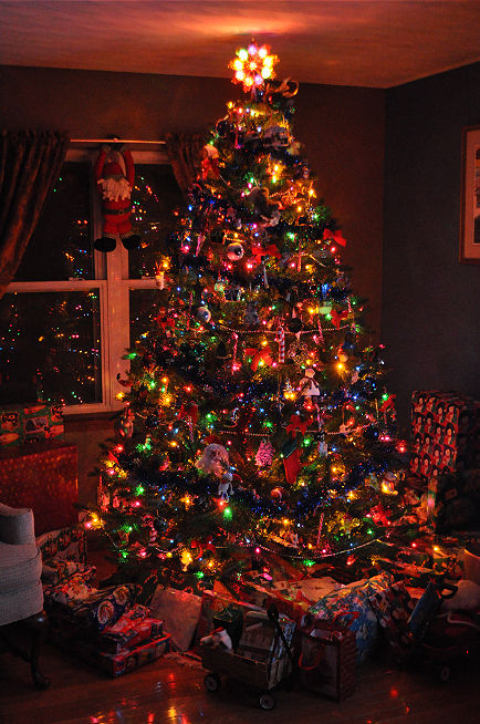 9 Foot Tall Christmas Tree Decoration Pictures Photos and Images for Facebook Tumblr