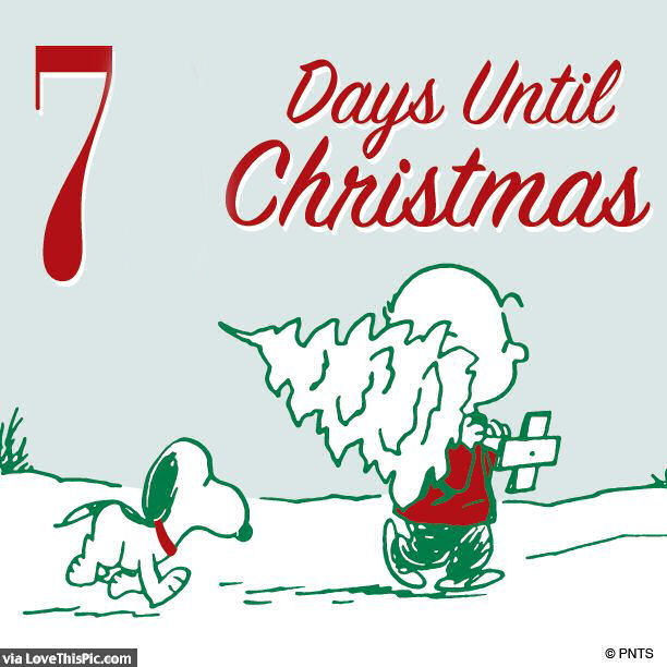 Snoopy 7 Days Until Christmas Quote Pictures Photos And