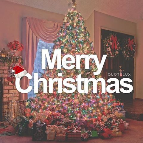 Merry Christmas Quote With Christmas Tree Pictures Photos and Images for Facebook Tumblr