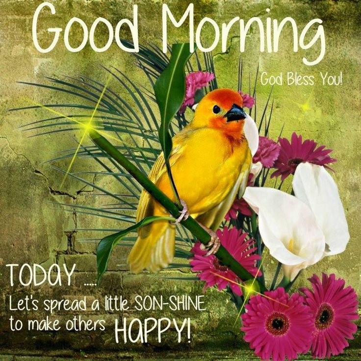 good morning spread happiness