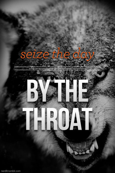Seize The Day By The Throat Pictures Photos and Images for Facebook Tumblr Pinterest and