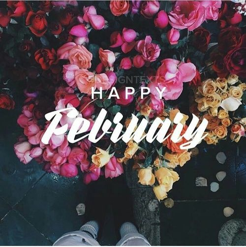 Happy Valentines Day Cute Wallpapers Happy February Pictures Photos And Images For Facebook