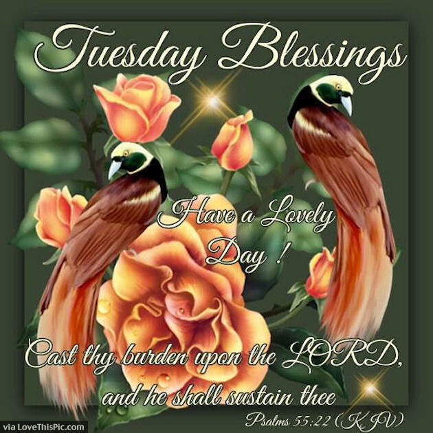 Have A Lovely Tuesday God Bless Pictures Photos And