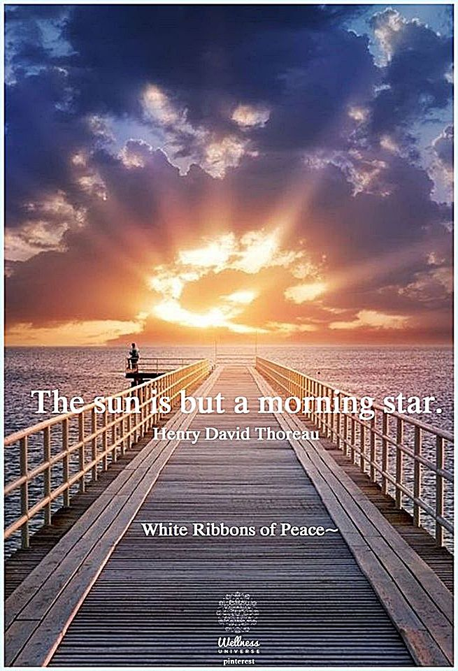 Good Morning The Sun Is A Morning Star Pictures Photos