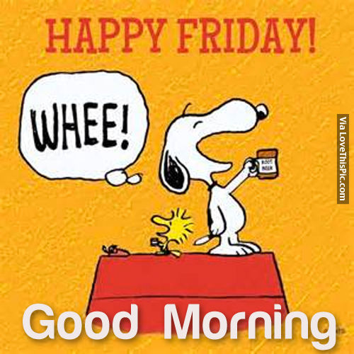 Happy Friday Good Morning Pictures Photos and Images