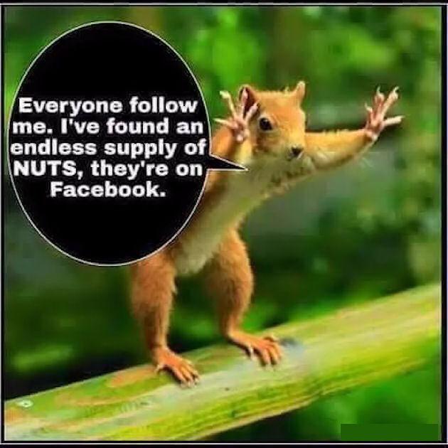 https://i0.wp.com/www.lovethispic.com/uploaded_images/243162-All-My-Facebook-Friends-Are-Crazy.jpg