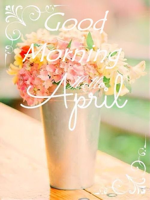 Wallpaper Life Quotes Sayings Good Morning Hello April Pictures Photos And Images For
