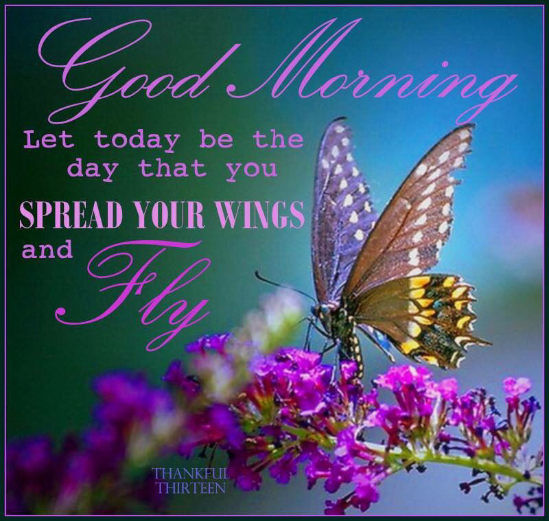 good morning let today
