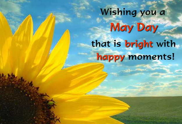 Happy Boss Day Quotes Wallpapers Wishing You A May Day That Is Bright With Happy Moments