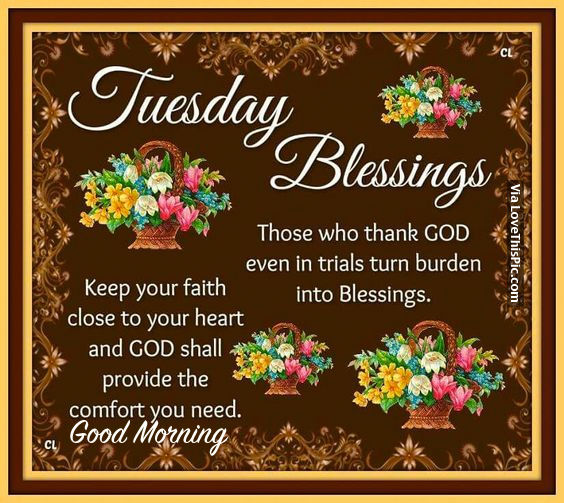 Tuesday Morning Blessings Quotes