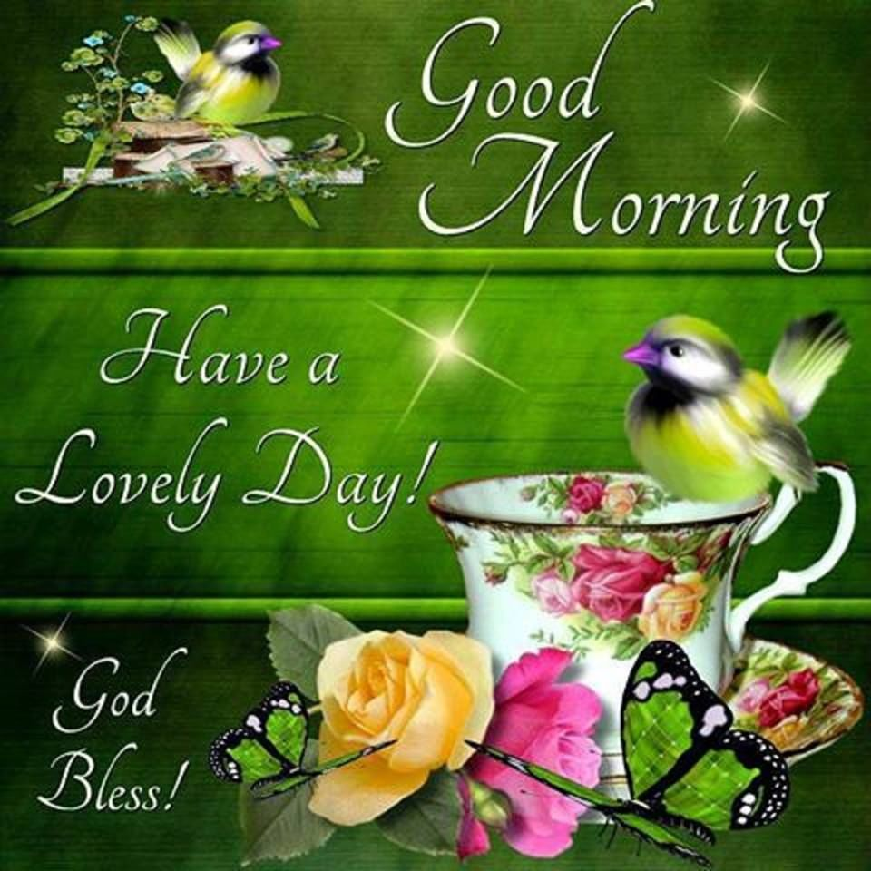 Good Morning Have A Lovely Day Spring Quote Pictures