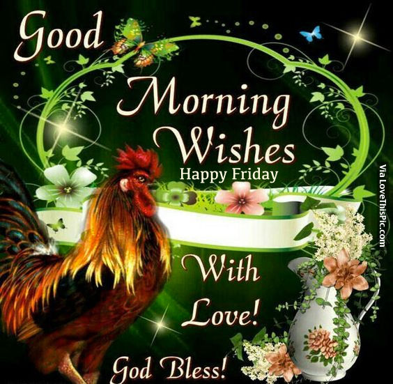 Cute The Person Who Is Reading This Right Now Wallpaper Good Morning Wishes Happy Friday Pictures Photos And