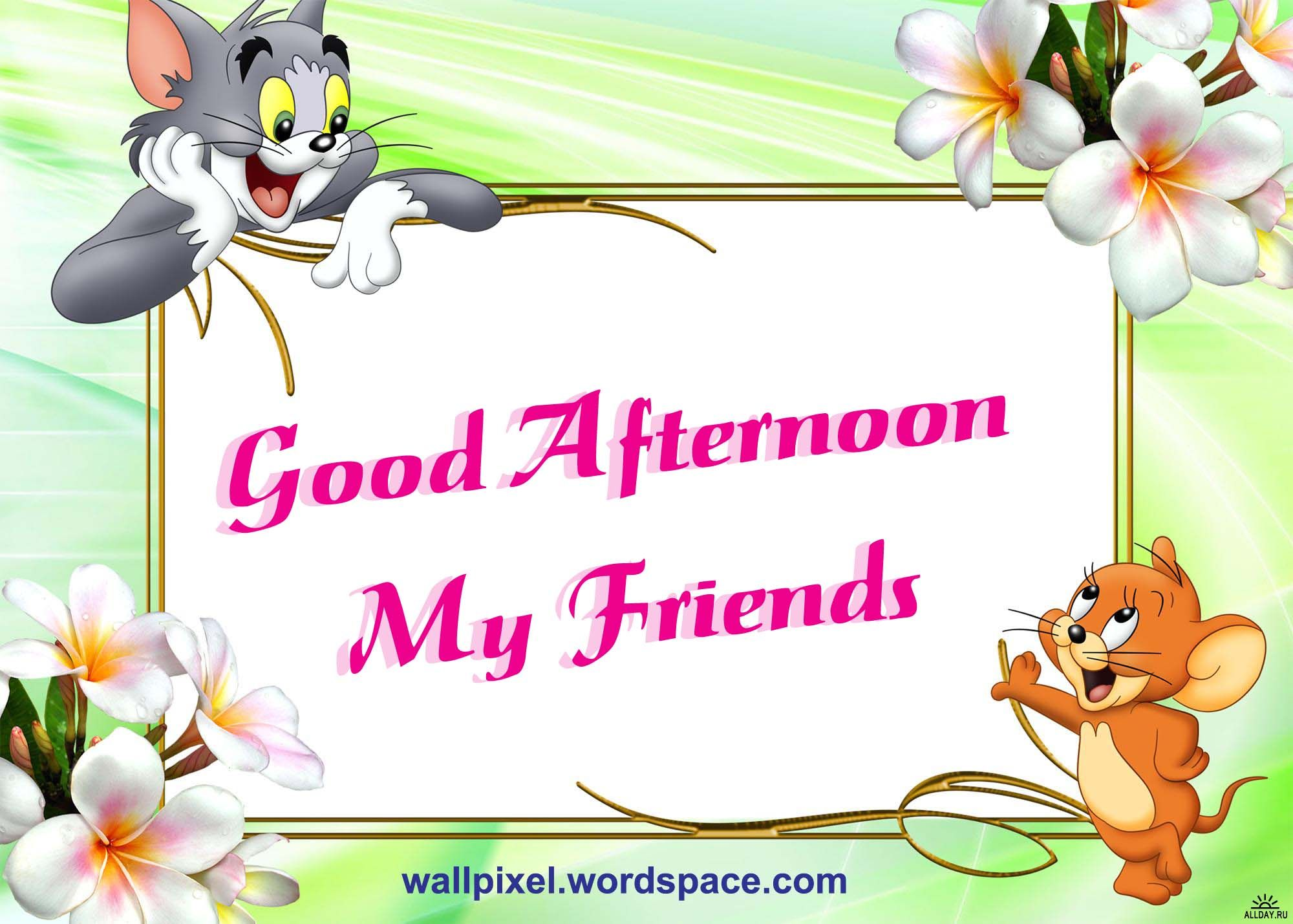 Good Afternoon My Friends Pictures Photos And Images For