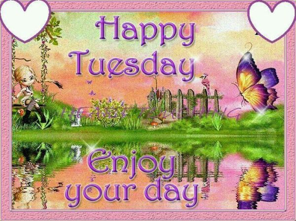 happy tuesday enjoy day
