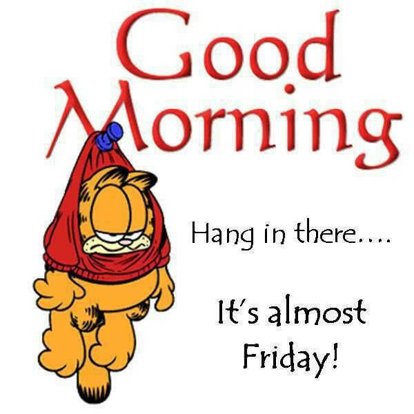 Good Morning Hang In There Its Almost Friday Pictures