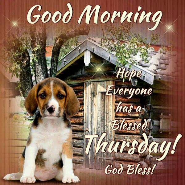 Good Morning Hope Everyone Has A Blessed Thursday God Bless Pictures Photos and Images for