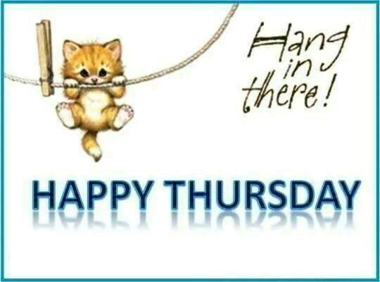Hang In There Happy Thursday Pictures Photos and Images